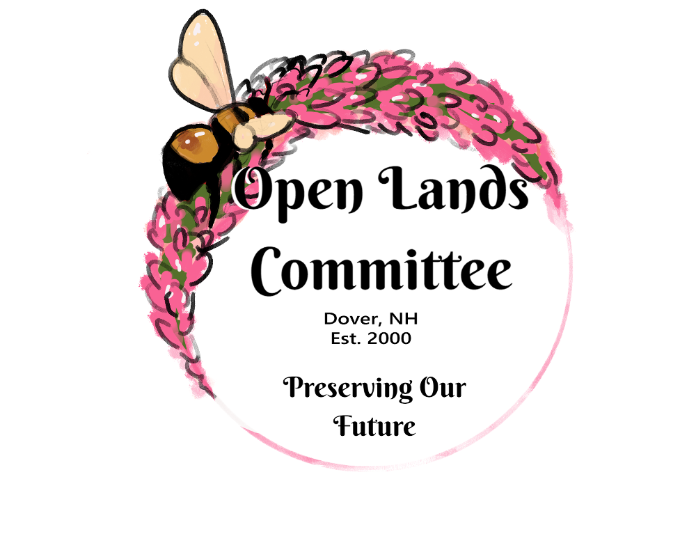 Open Lands logo